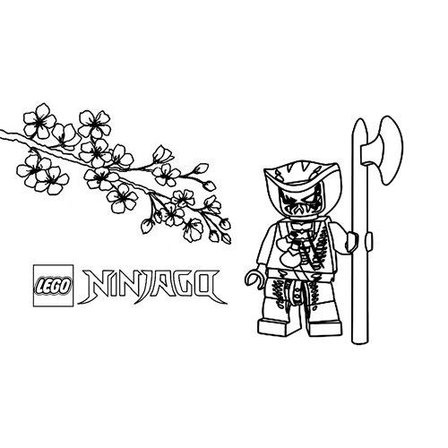 scales lego ninjago coloring book