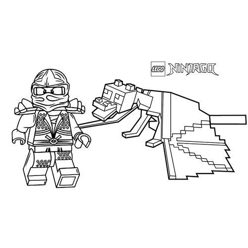 floyd and his dragon lego ninjago coloring book