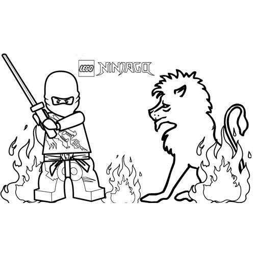 zane the white ninja lego ninjago