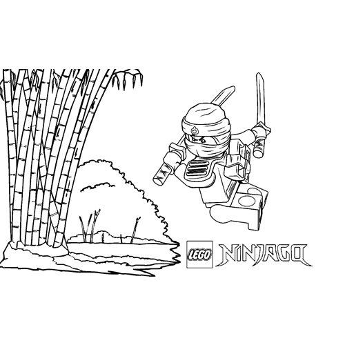 fighter kai ninjago coloring book