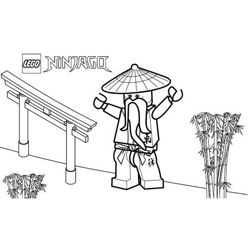 sensei wu master of ninjago