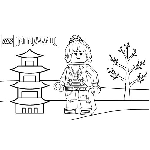 nya in the house lego ninjago coloring book