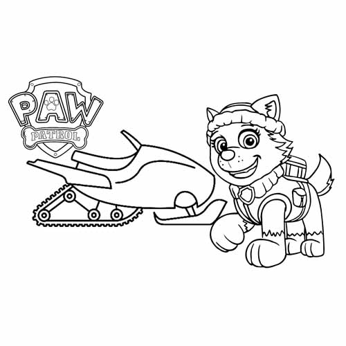 everest and his bike paw patrol coloring book