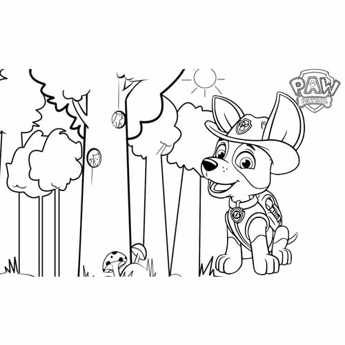 tracker the ranger paw patrol coloring book