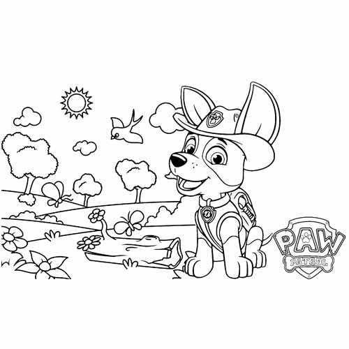 tracker in the forest paw patrol coloring book