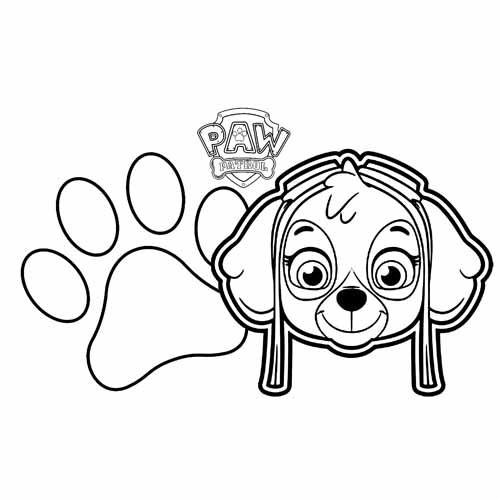 funny skye paw patrol coloring book