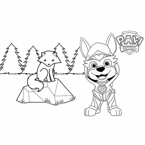 happy tracker paw patrol coloring book