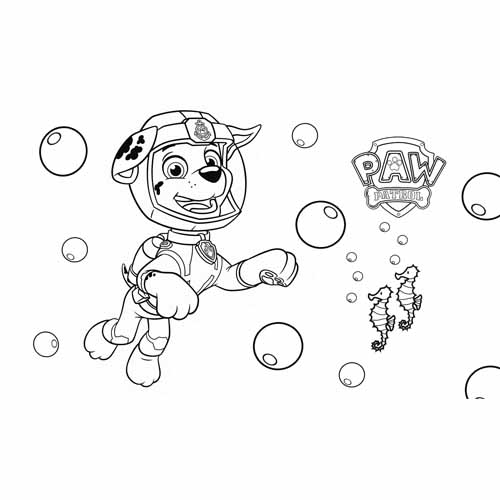 marshall in the sea paw patrol coloring book
