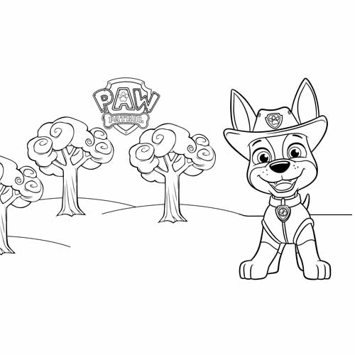 paw patrol tracker coloring book