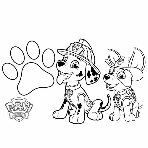tracker and marshall BFF paw patrol coloring book