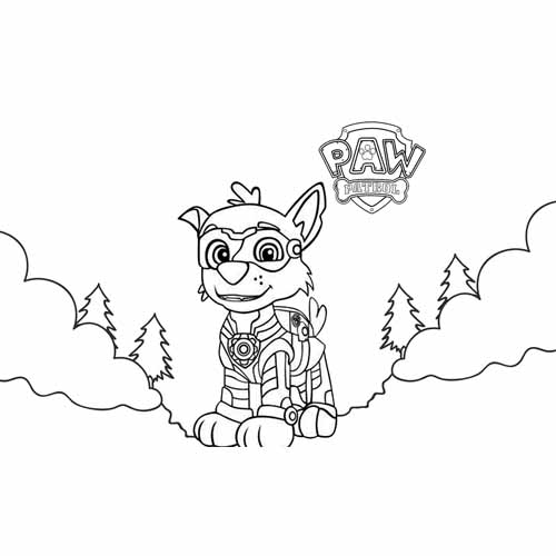 super everest paw patrol coloring book
